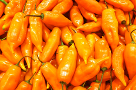 Peruvian Food Peru Export Food Products Manufacturing